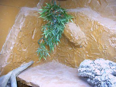 einrichtung im bartagamen terrarium bartagame. Black Bedroom Furniture Sets. Home Design Ideas