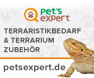 Petsexpert